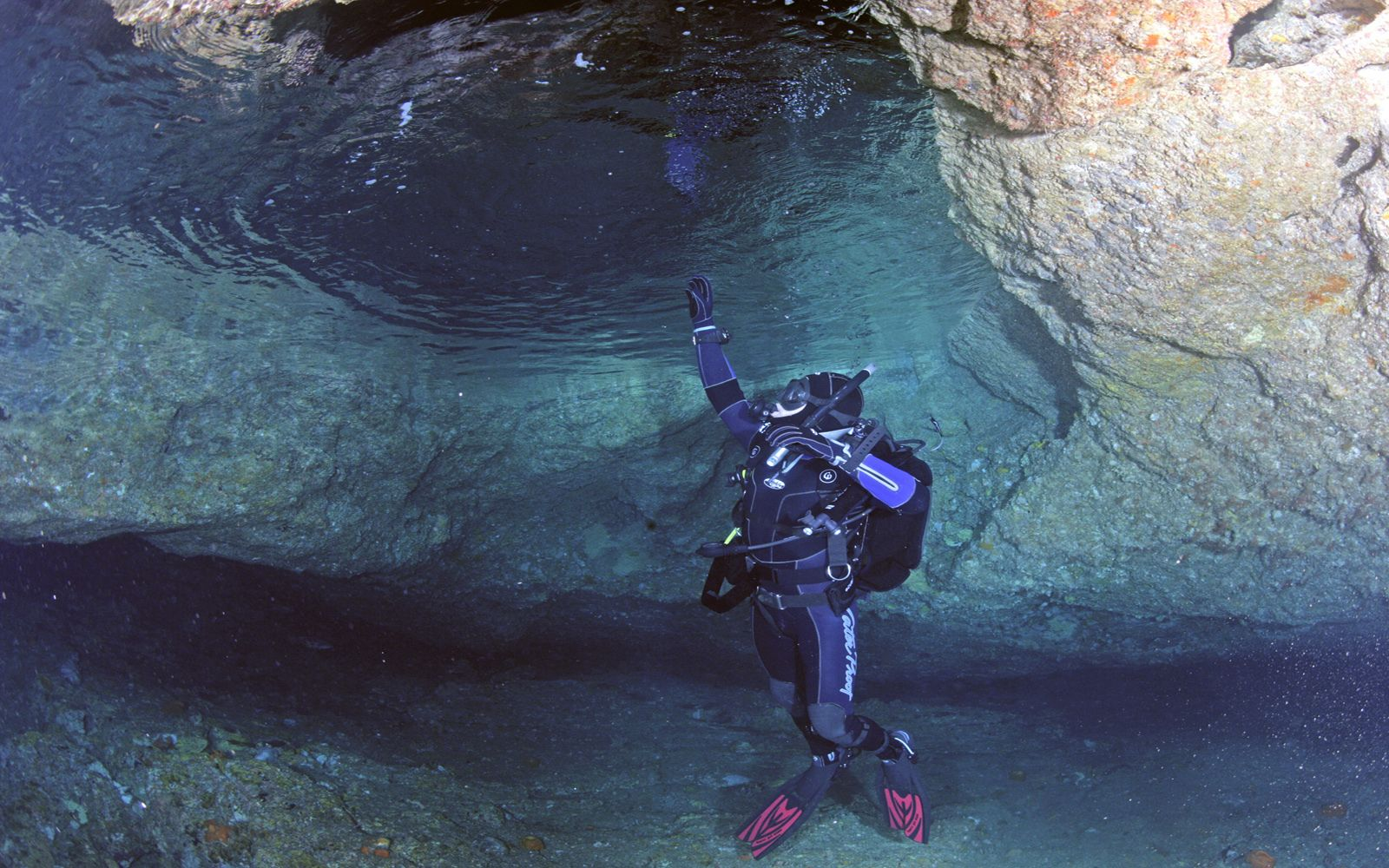 Diver in New Zealand
