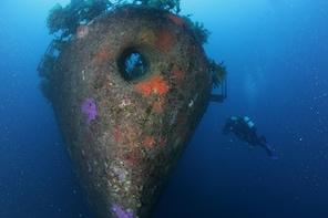 HMNZS Canterbury Wreck Dive
