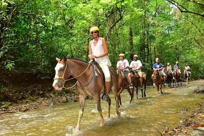 Group horseback riding in Herradura