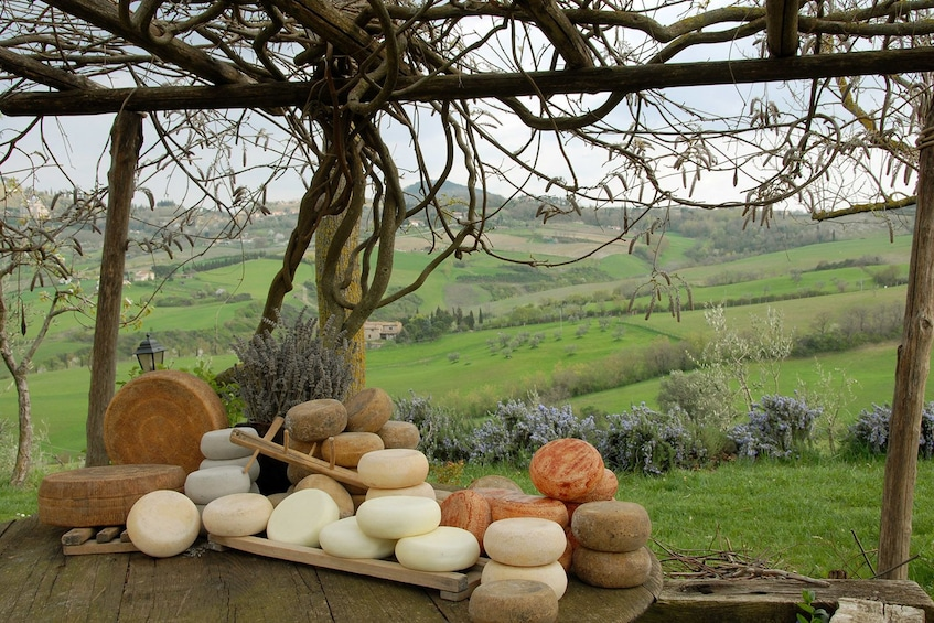 Wheels of cheese on a table at a vineyard