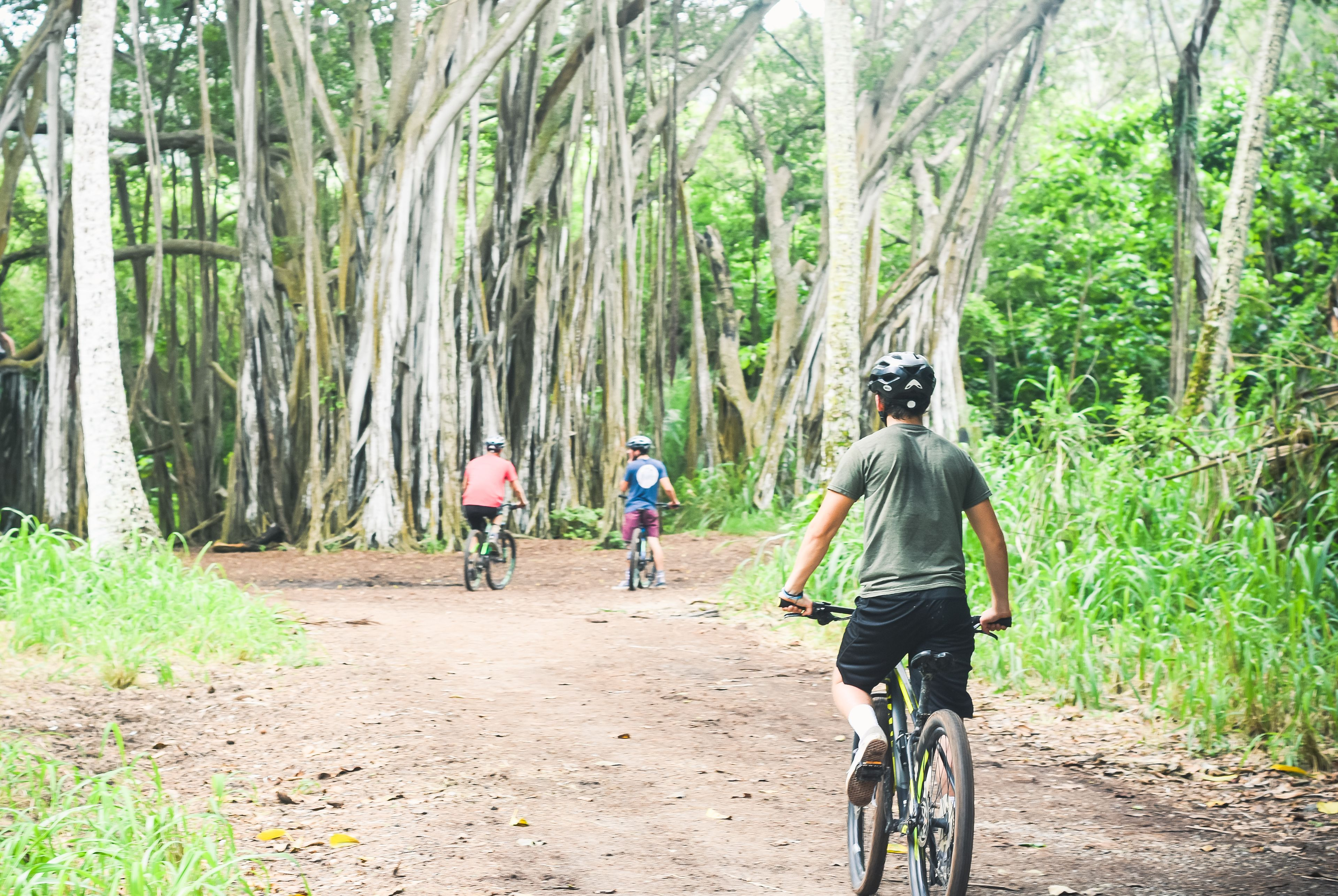 Bicycling group on a path in the woods on Oahu
