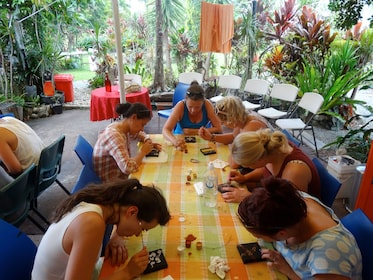 Group at a contemporary Aboriginal art lesson at the Janbal Aboriginal Art Gallery in Mossman