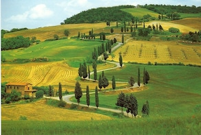 Chianti:Wine and Olive Oil Tasting in the Tuscan countryside