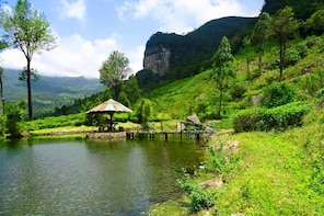 Image result for loolkandura estate and james taylor