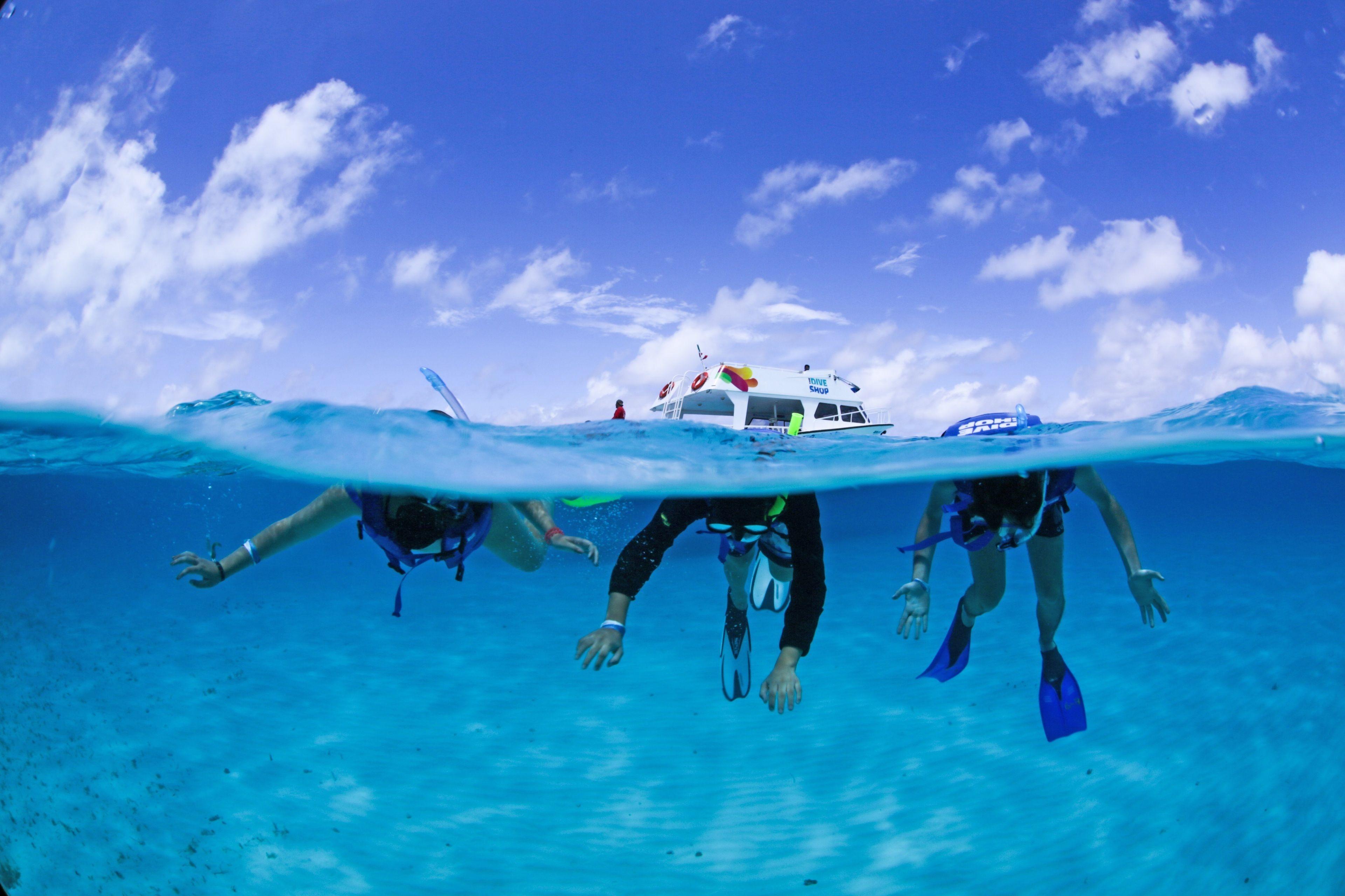 Snorkeling group in Cozumel