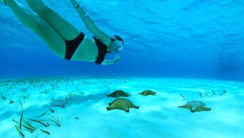 Snorkeling.jpeg