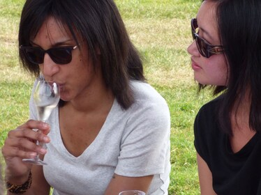 Exclusive Private English Wine Tour with Pub Lunch