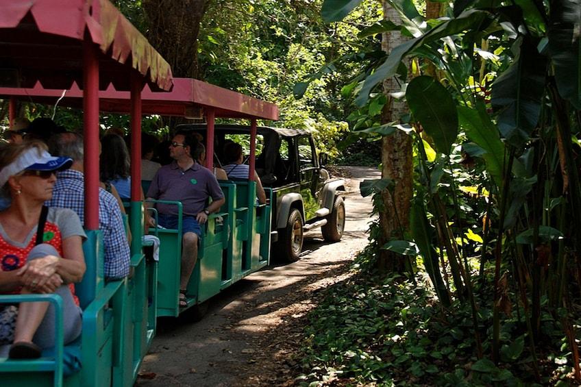 Åpne bilde 2 av 7. Wildlife Sanctuary bus