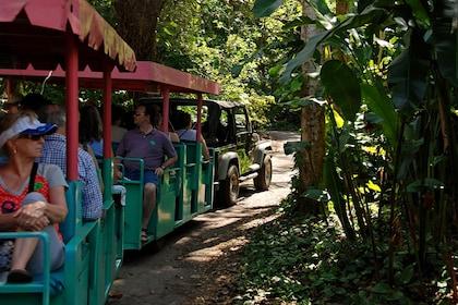 Wildlife Sanctuary bus