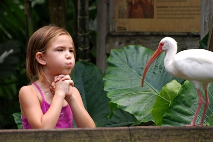 Young girl and bird in a zoo