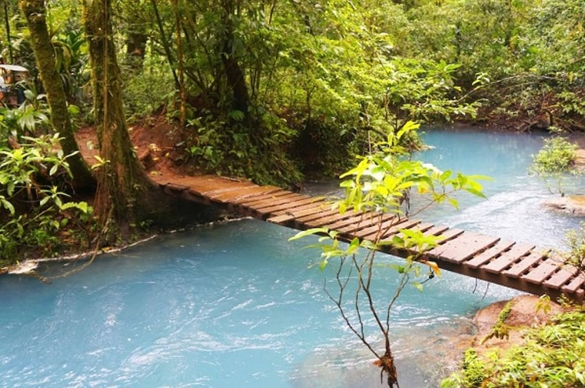Show item 2 of 10. Rio Celeste Hiking, Sloth & Llanos de Cortez Waterfall Tour