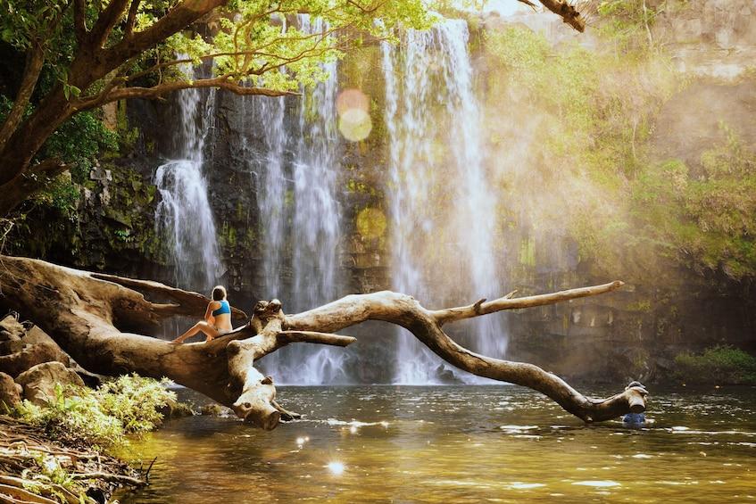 Rio Celeste Hiking, Sloth & Llanos de Cortez Waterfall Tour