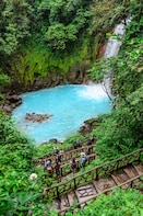Rio Celeste Hiking, Sloth & Llanos de Cortez Waterfall Tour