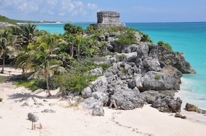 Tulum Low Cost Tour