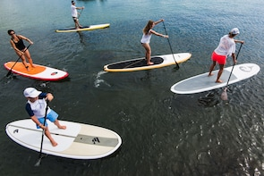 Group Stand Up Paddle Tour of Sydney Harbour