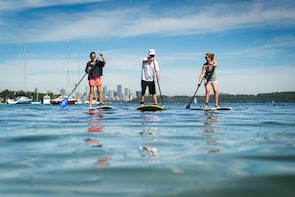 Stand up paddle, walking tour and 2 course Doyles Lunch