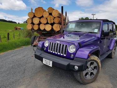 Jeep next to a logging truck