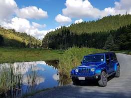 Half Day 'Shore Escape' - Bay of Islands Private Jeep Tour