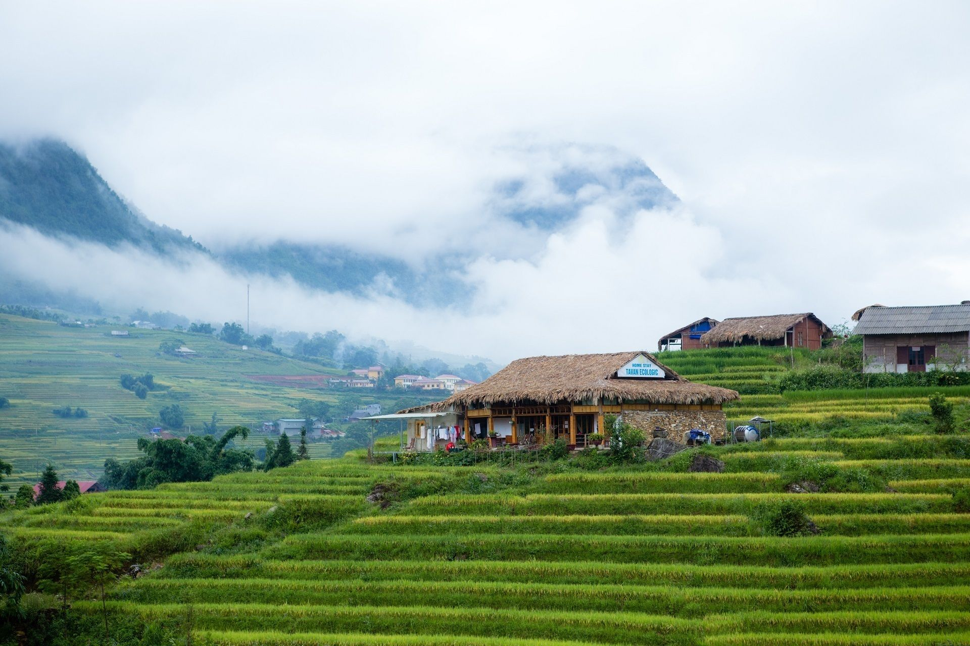 Muong Hum Market Guided Day Tour from Sapa