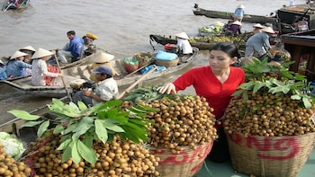 Cai Be Floating Market & Tan Phong Island with Cooking Class