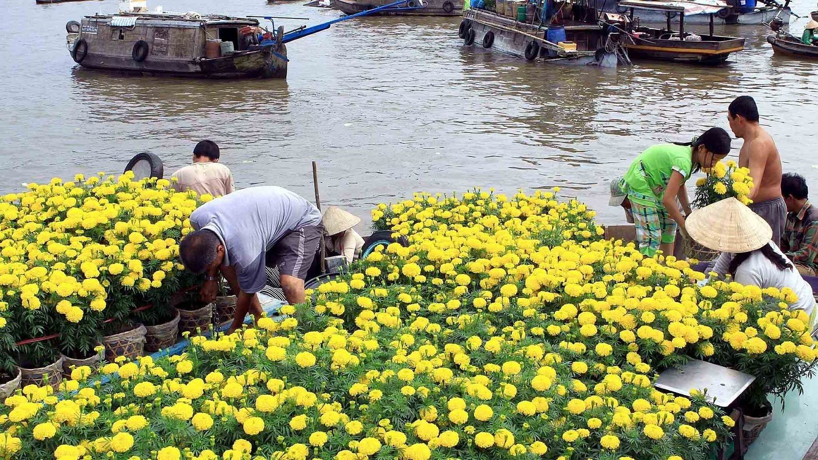 2-days My Tho Boat Trip and Cai Rang Floating Market