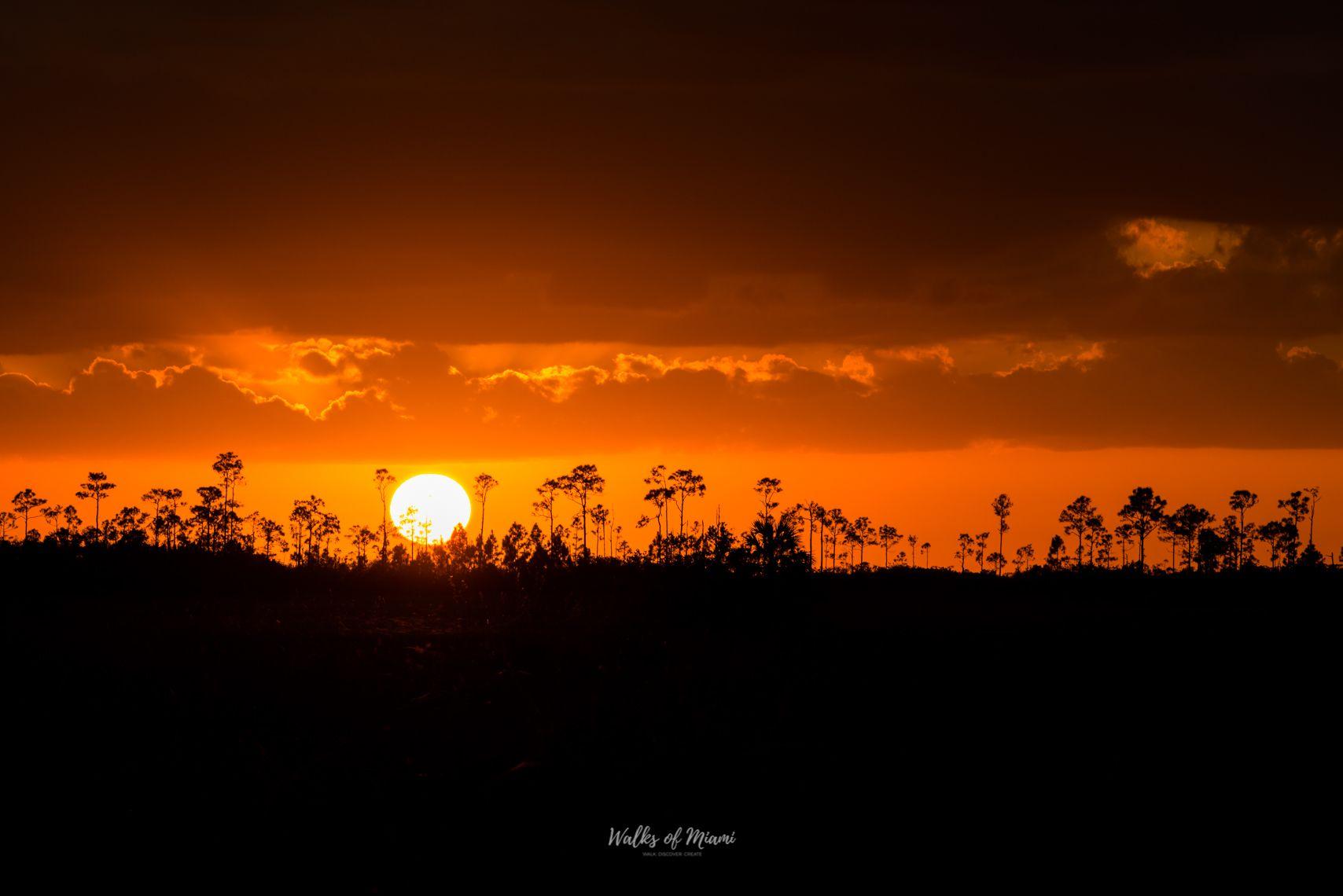 Stunning Everglades National Park at sunset
