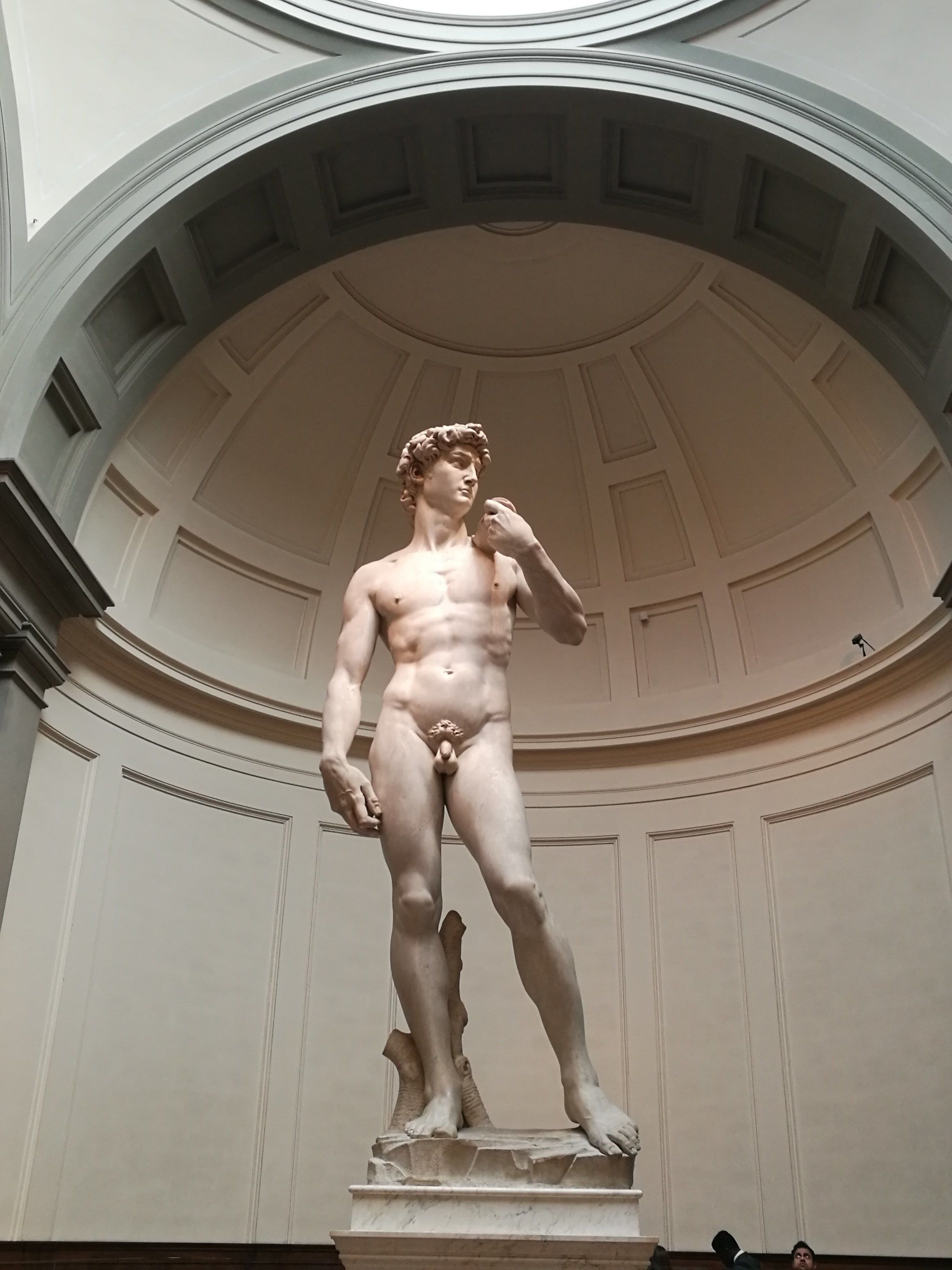 Best of Florence: Uffizi & Accademia Skip-the-Line Tour