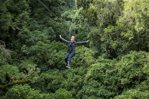 Ultimate Canopy Tour - Rotorua
