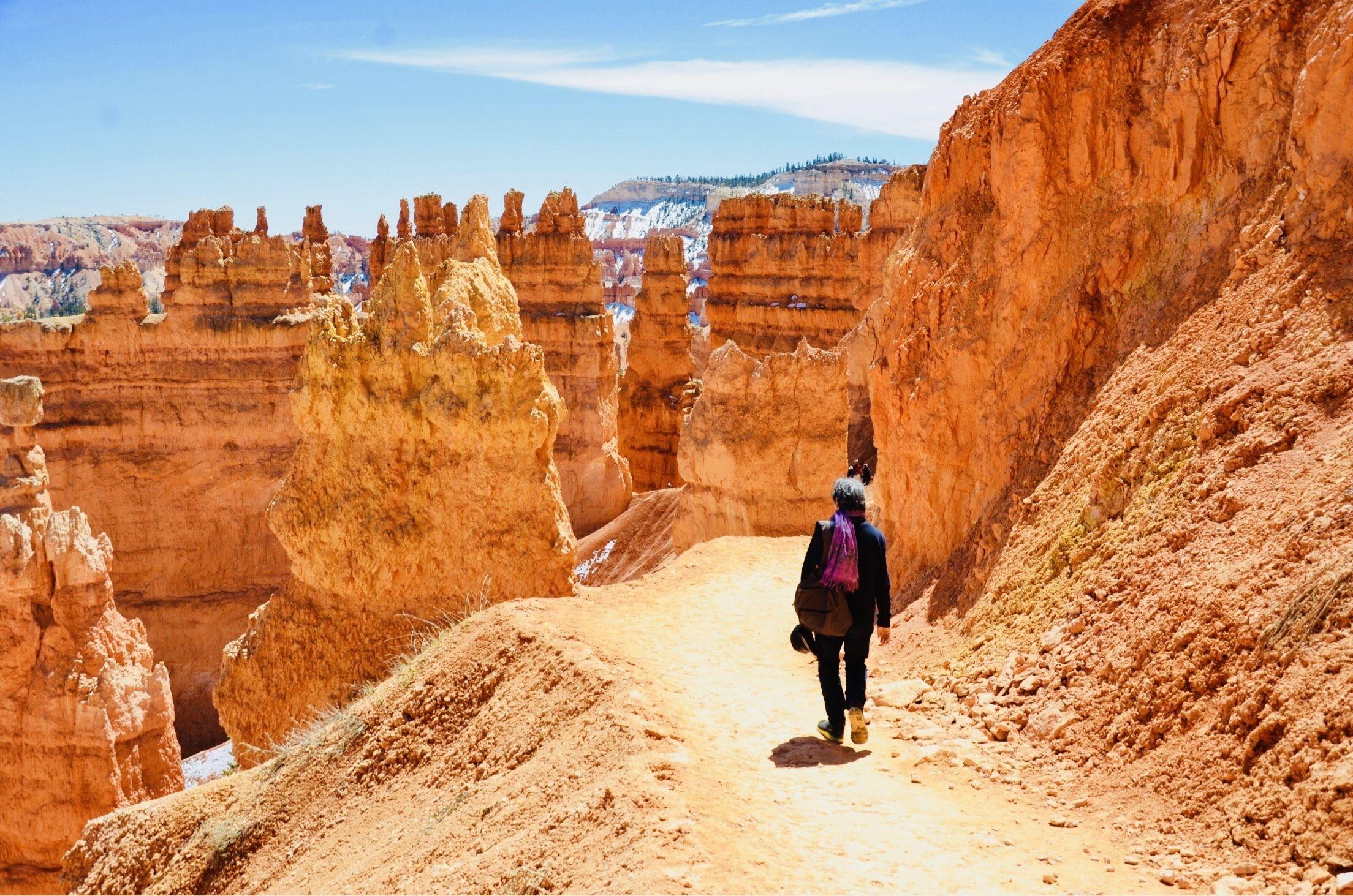 Bryce Canyon National Park Trail.jpg