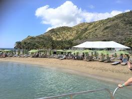Caribbean Beach Delight Half-Day Tour