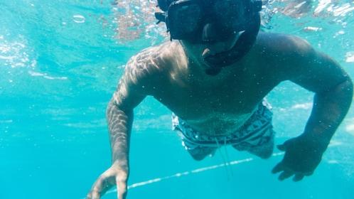 Soufriere SeaFari - Buggy & Catamaran Land & Sea Tour