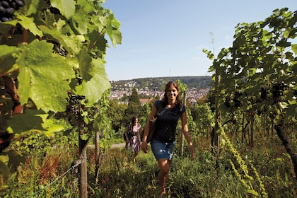 Women walking through a vineyard in Stuttgart