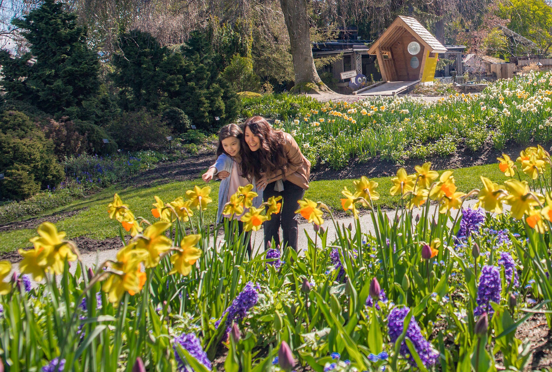 VanDusen Botanical Garden Admission Tickets