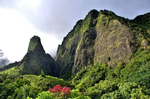 Iao Valley & Maui Upcountry with lunch