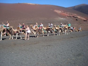 Group riding camels in Timanfaya