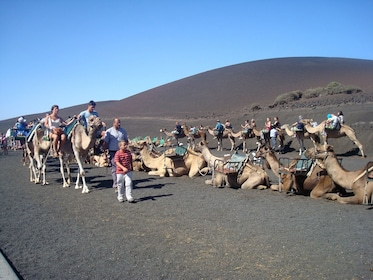 Group getting ready for a camel ride safari in Timanfaya