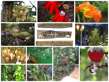 Botanical Gardens and Butterfly Gardens in Liberia