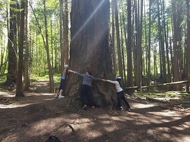 Group hugging a tree at Francis King Regional Park