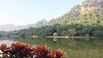 Full Day Explore Cuc Phuong National Park from Hanoi