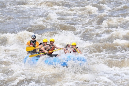 Group whitewater rafting at the Royal Gorge