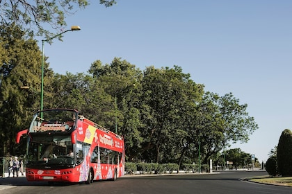 City-Sightseeing-Worldwide-01_preview.jpeg