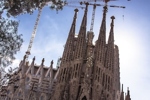 Sagrada Familia: Skip the line Guided Tour with Tower Access