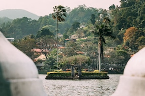 Best Day Trip to Kandy: Nature & Culture