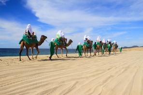 Camel Ride Encounter