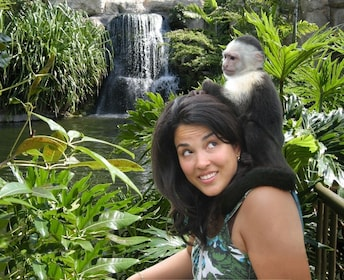 Monkey sitting on top of a woman at Jungle Island in Miami