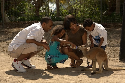 Group feeding a wallaby at Jungle Island in Miami
