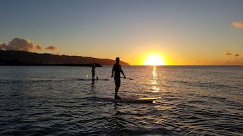 Sunset Stand Up Paddle Board Nature and Turtle Tour