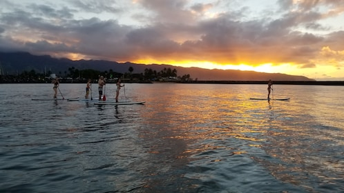 Stand up paddle boarding tour at sunset in Haleiwa