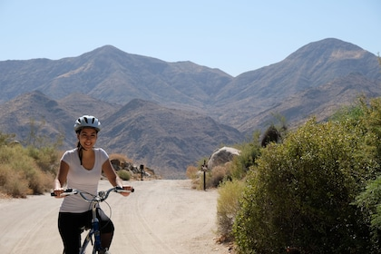 Woman on a bicycle ride in Palm Springs