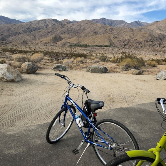Show item 2 of 8. Palm Springs Indian Canyons Bike and Hike